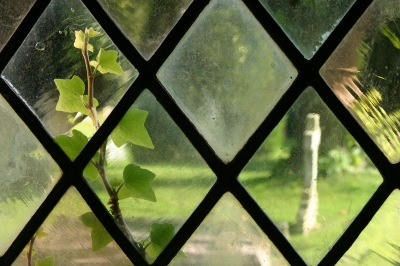 Ivy and grave through a church window
